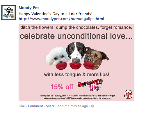 Moody Pet Valentine's Day Ad