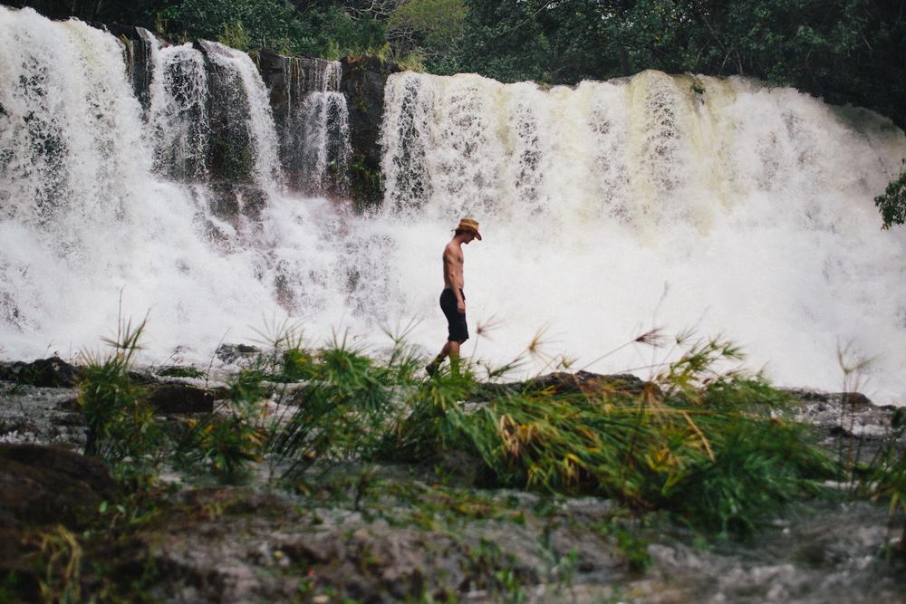 Kauai jungle-002.jpg