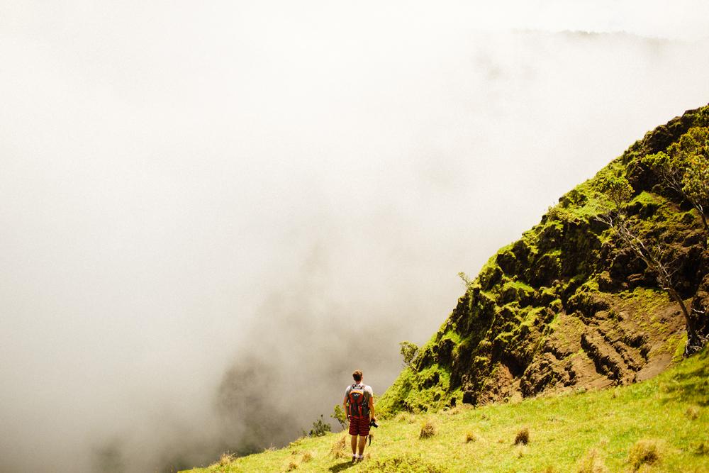 Kauai jungle-010.jpg
