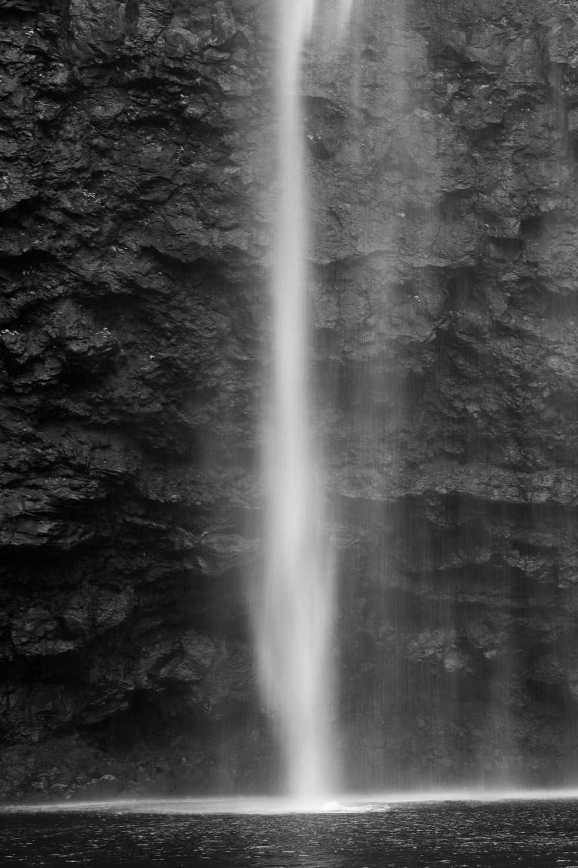 Kauai jungle-015.jpg