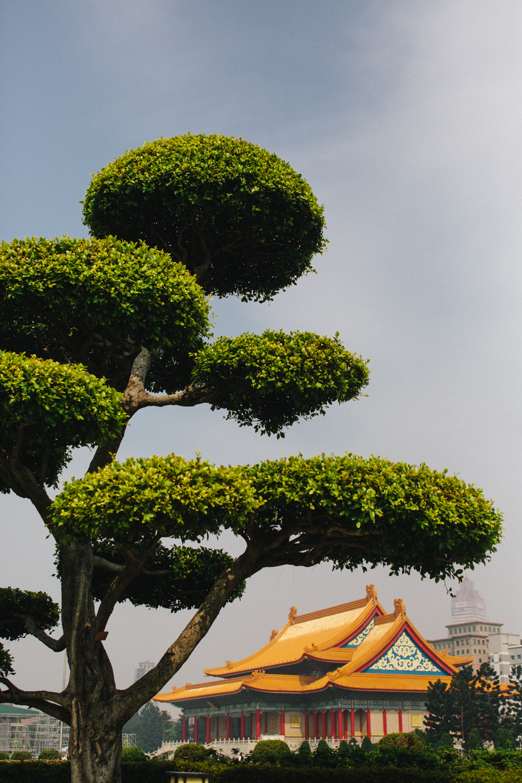 Taiwan -37.jpg
