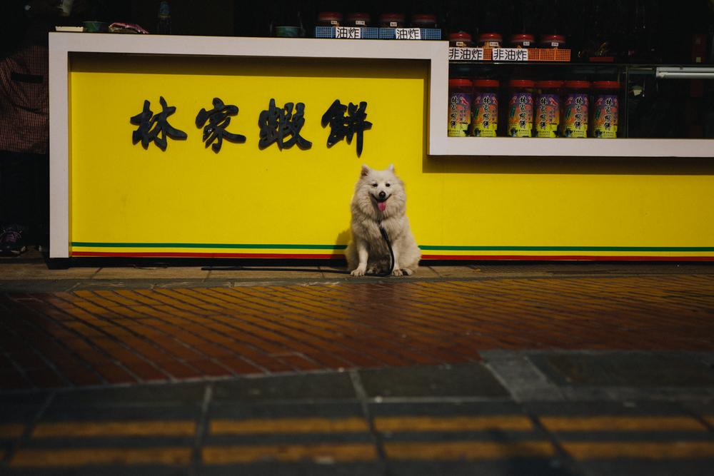 Taiwan -342.jpg