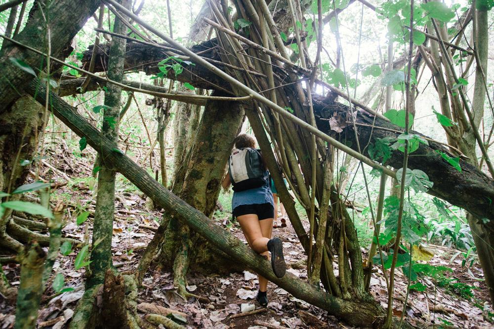 Kauai006.jpg