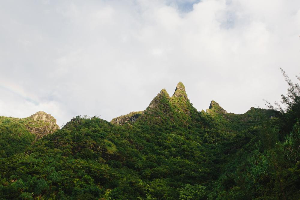 Kauai008.jpg