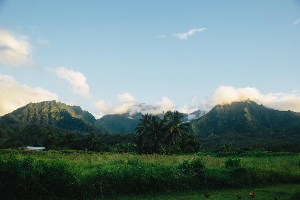 Kauai002.jpg