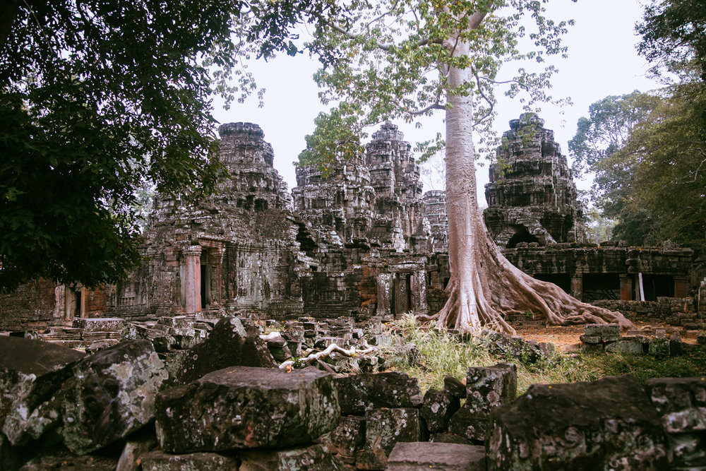 Cambodia026.jpg