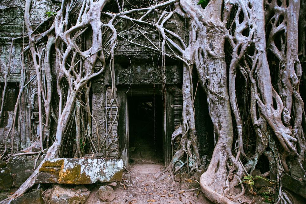 Cambodia027.jpg