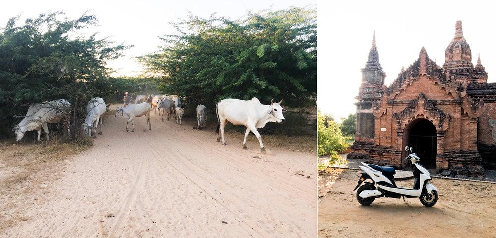 Myanmar048.jpg