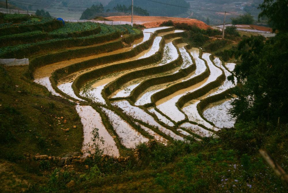 Vietnam001.jpg