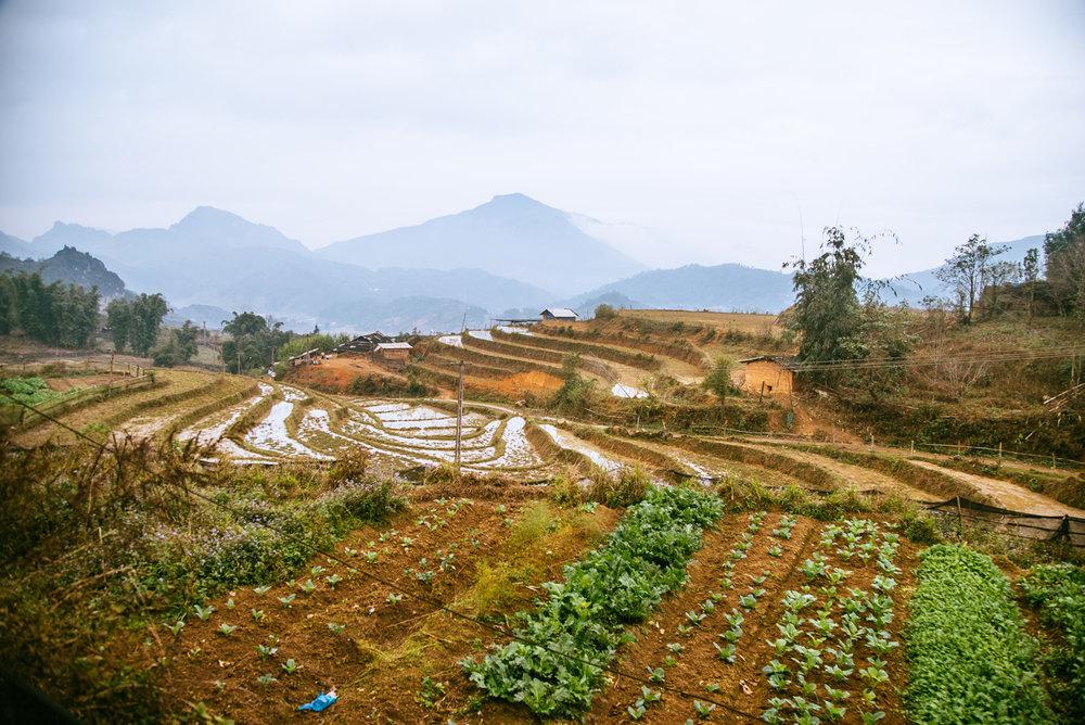 Vietnam007.jpg