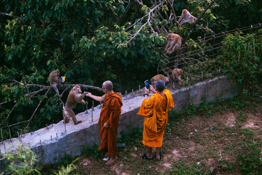Thailand012.jpg