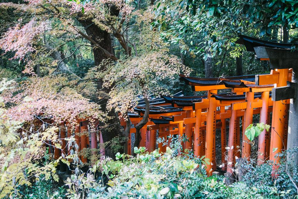 Japan030.jpg