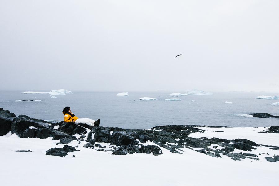 antarctica040.jpg
