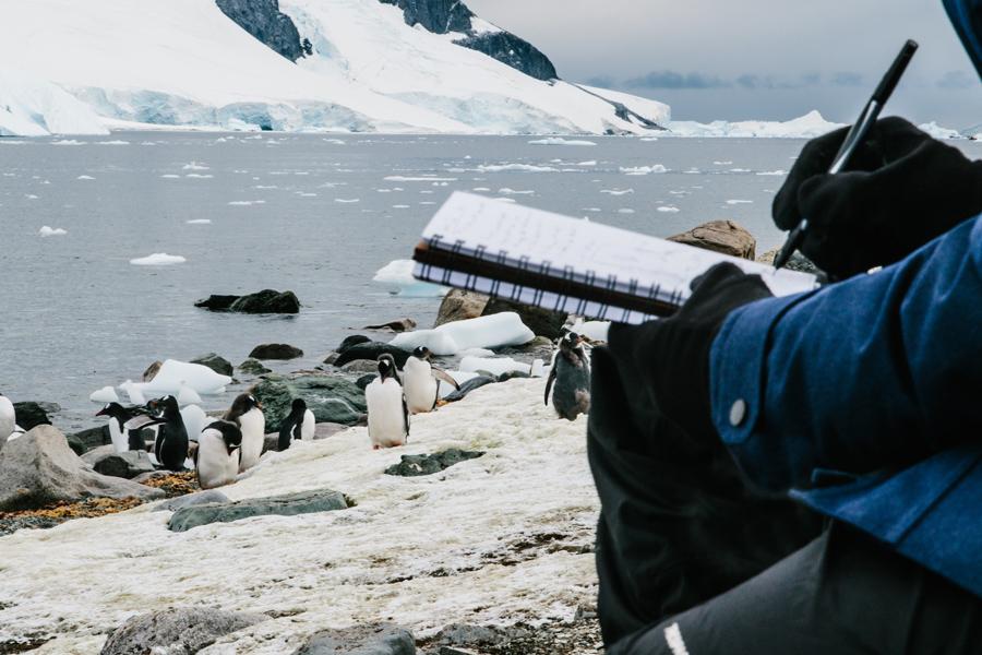 antarctica090.jpg