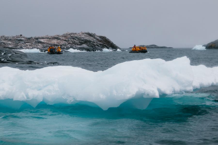 antarctica101.jpg