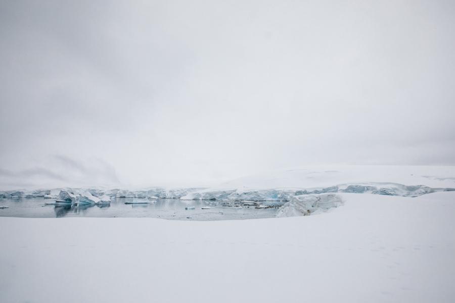 antarctica110.jpg