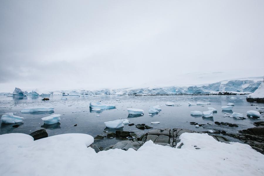 antarctica113.jpg