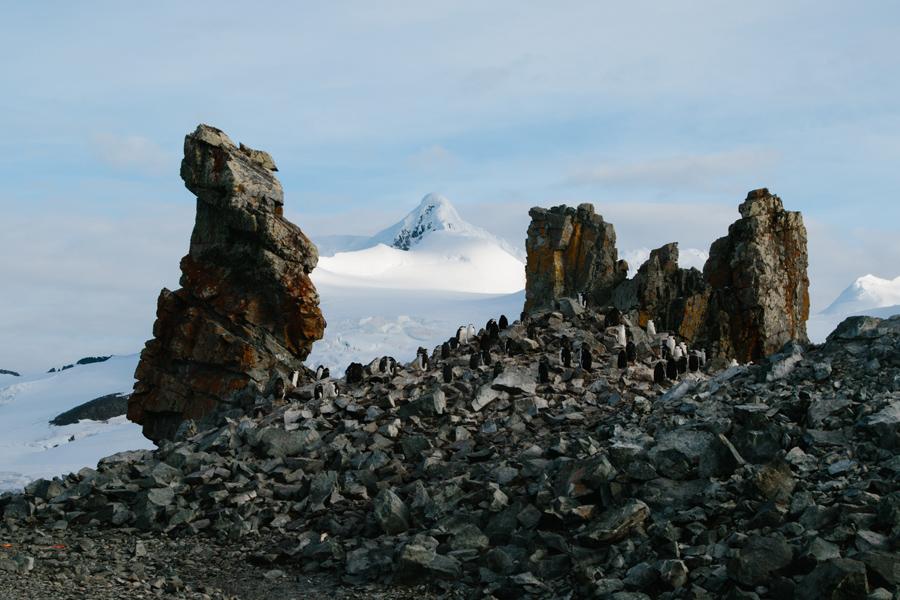 antarctica156.jpg