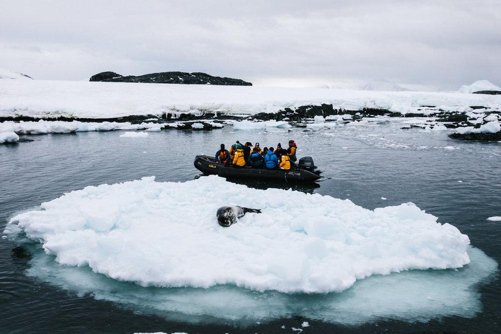 Antarctica-63.jpg