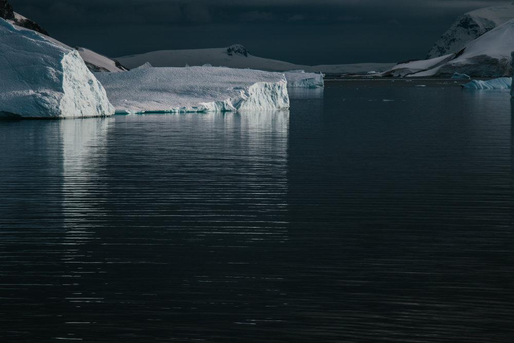 Antarctica-107.jpg
