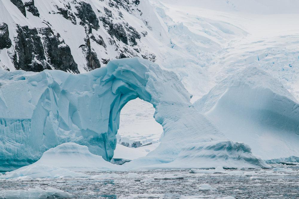 Antarctica-112.jpg
