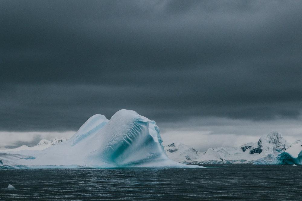 Antarctica-158.jpg