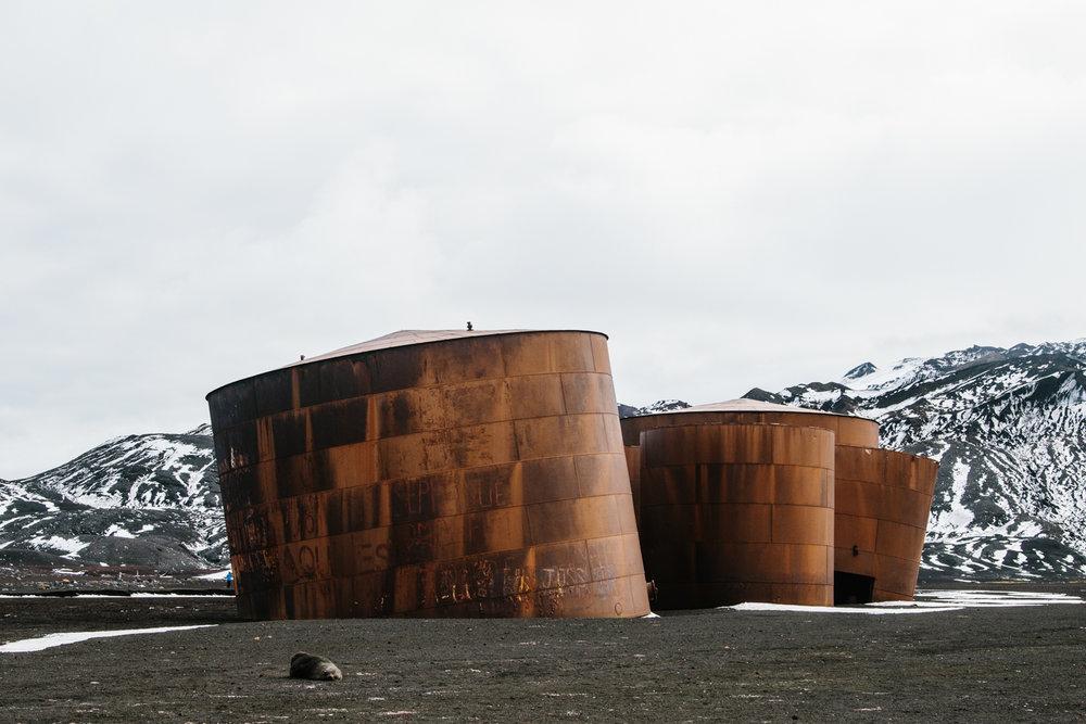 Antarctica-178.jpg