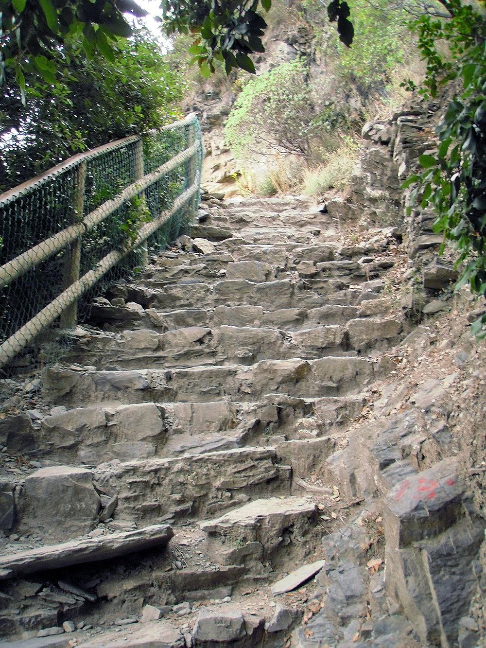 2018 ITALY_cinque terre_steep steps.jpg