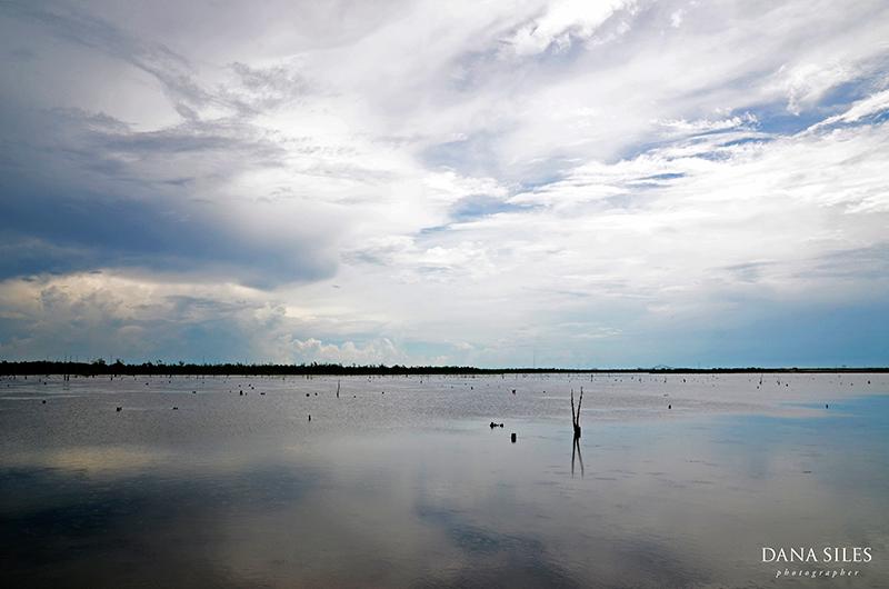 dana-siles-photography-personal-work-nola-05.jpg