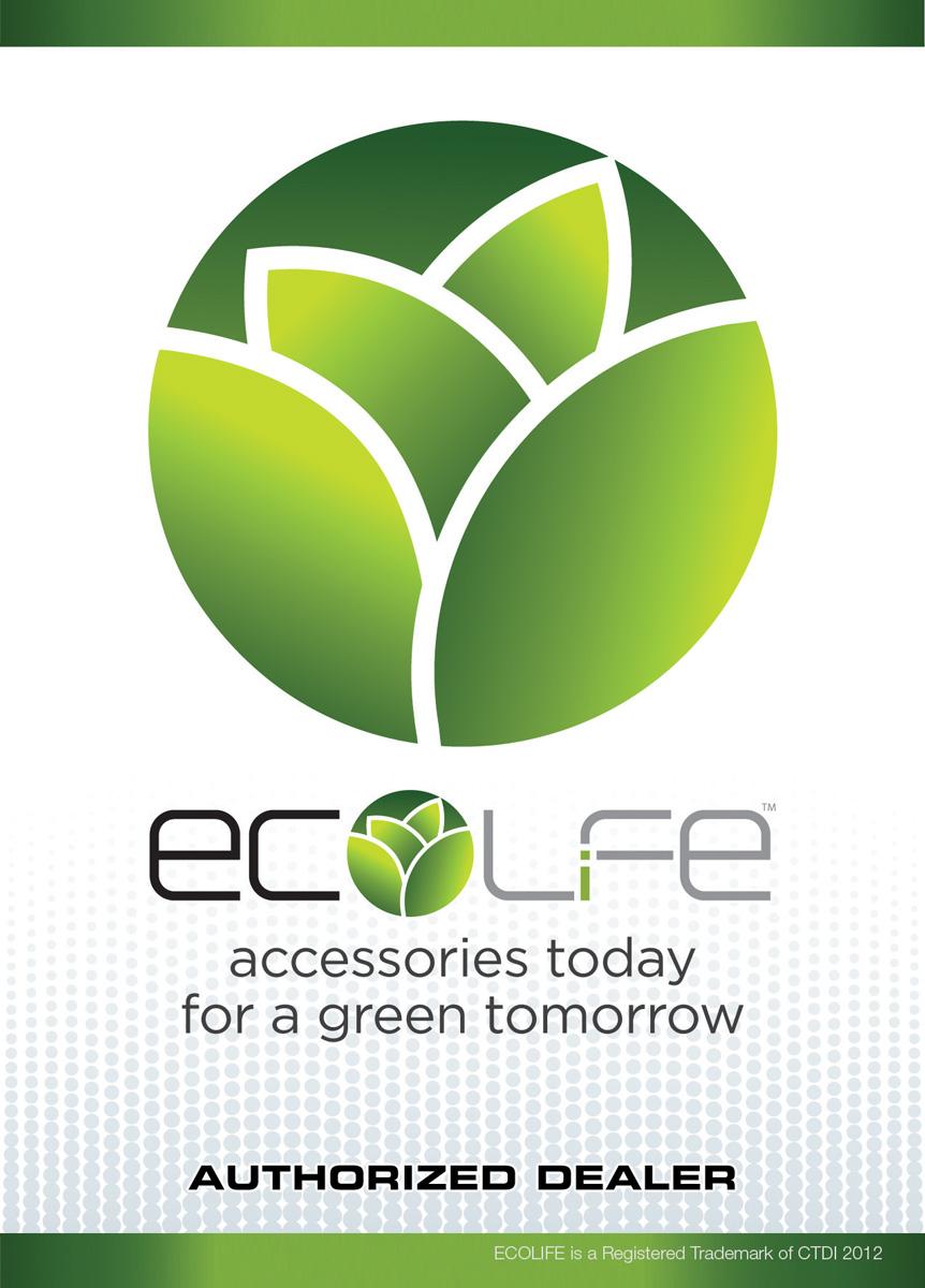 EcoWindowCling4x6_2012.jpg
