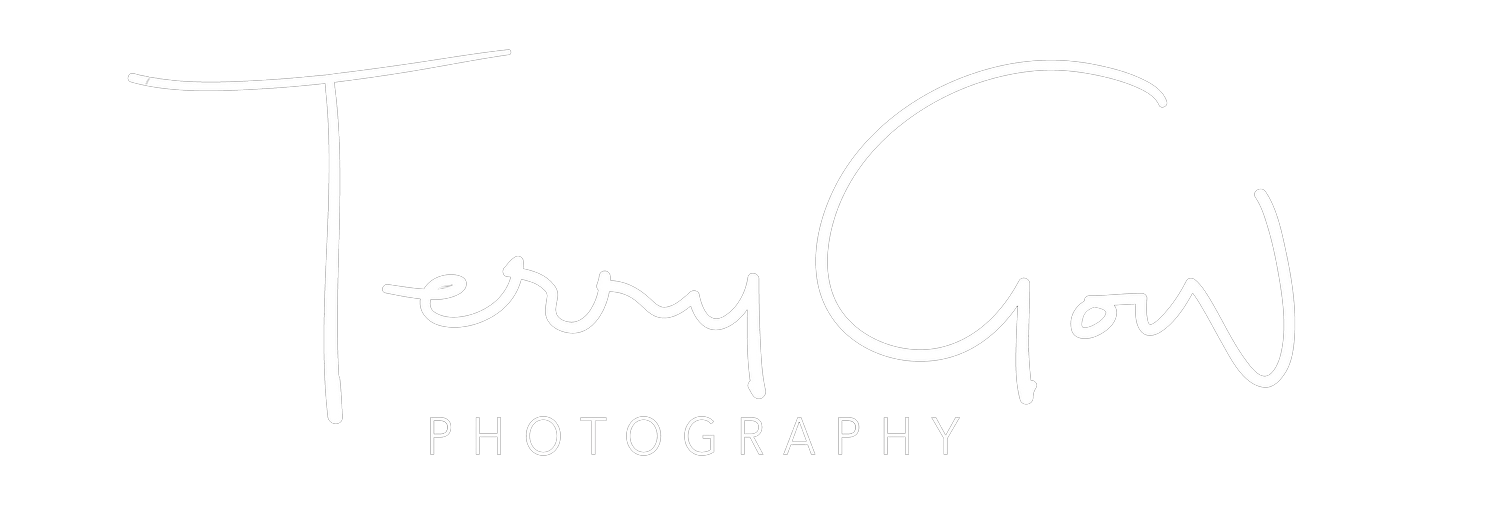 Brisbane Wedding Photographer Terry Gow Brisbane Wedding Photography Packages