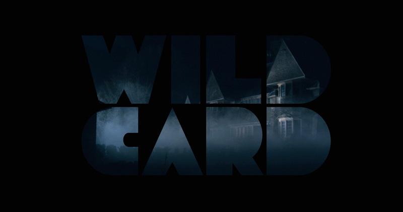 WILDCARD-LOGO-heroing-2.jpg