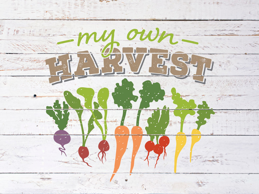 MY OWN HARVEST - Branding. Logo Design, Identity, Brand Mark Design. Geelong, Melbourne, Vic.
