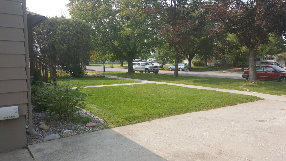 830 Woodford Front Yard.jpg
