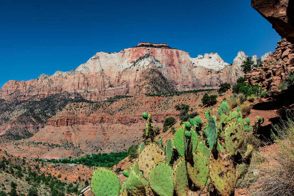 The view from our hike on Watchman's Trail.  It's a beautiful and tough place.