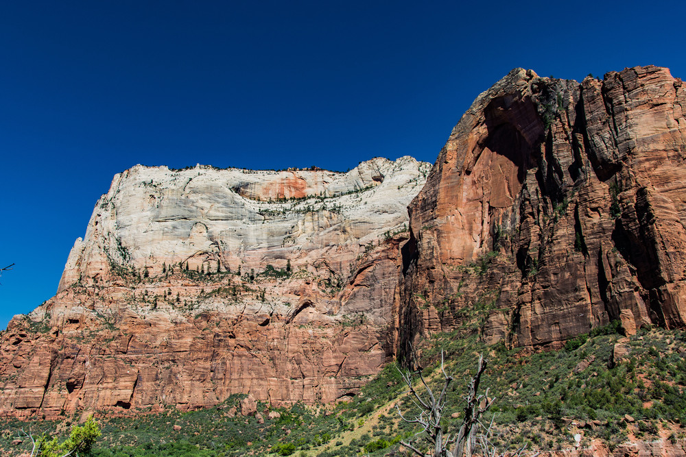 Just one more of Zion Canyon.