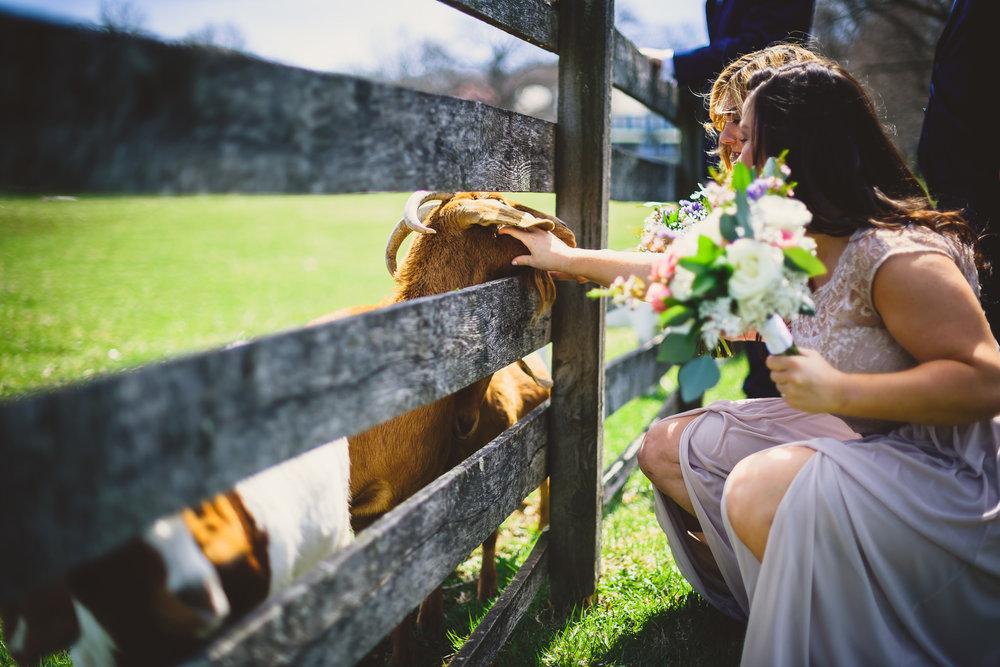 Springton-Manor-Wedding-Anton-Drummond-Photography-0009.jpg