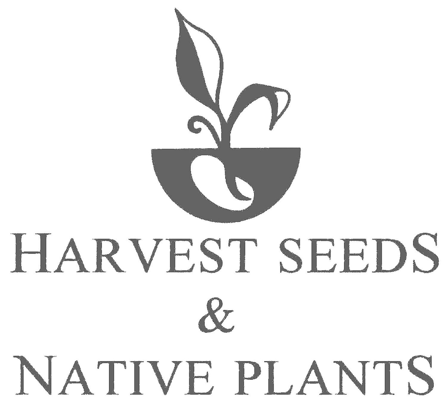 Harvest Seeds & Native Plants Nursery | Australian Native Plant Nursery Sydney