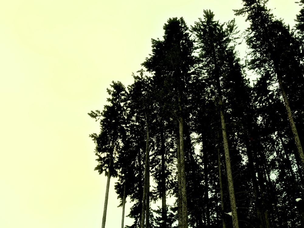 Banff 30.jpg