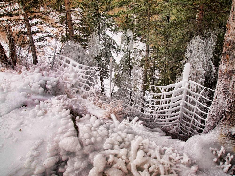 Banff 85.jpg