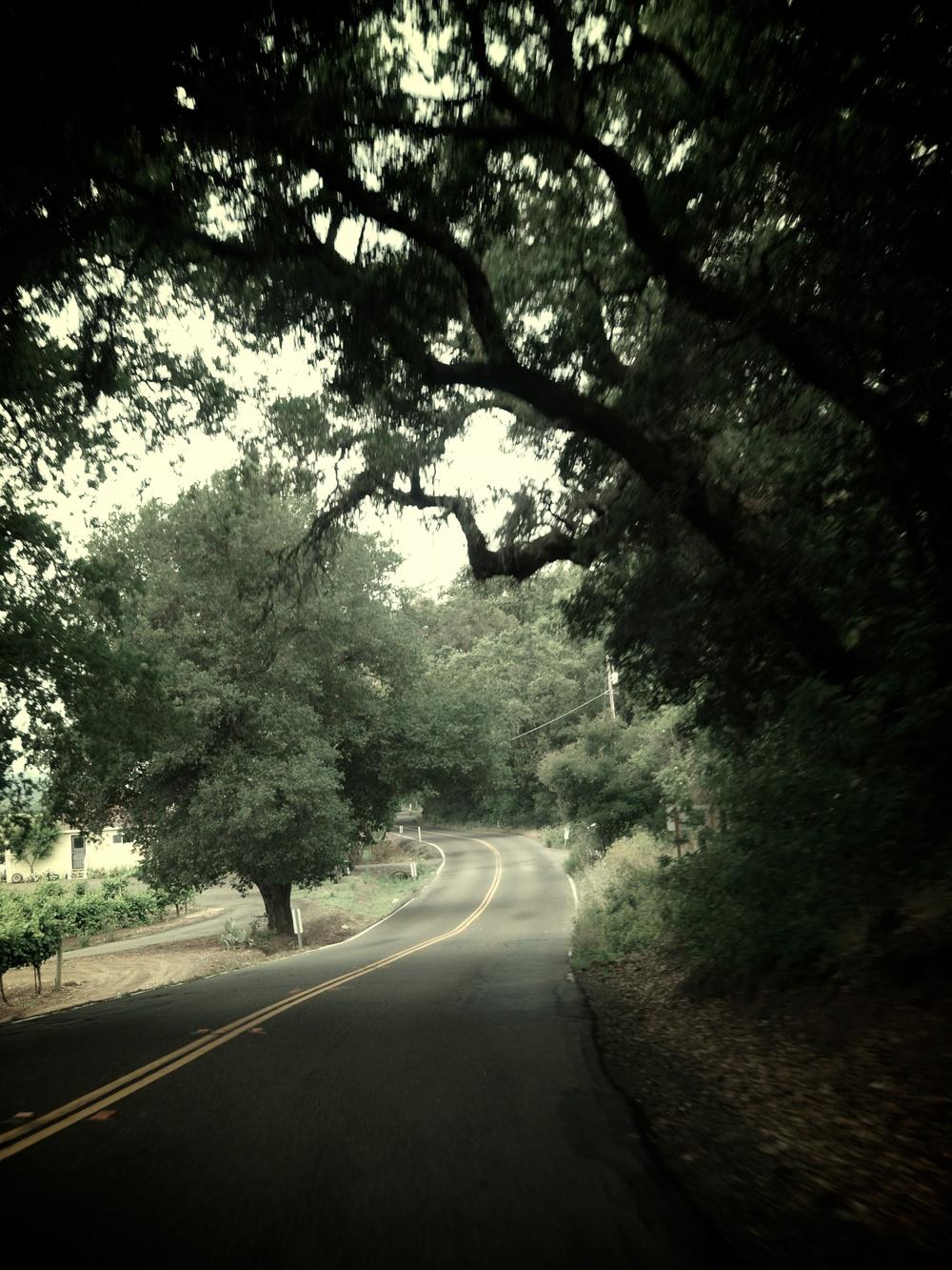 Western United States Road Trip Part 2 31.jpg
