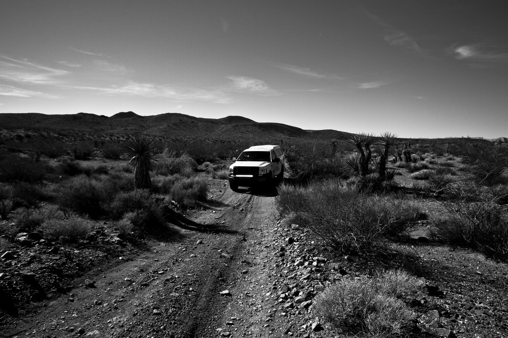 EXCURSION.JOSHUATREE [01].jpg