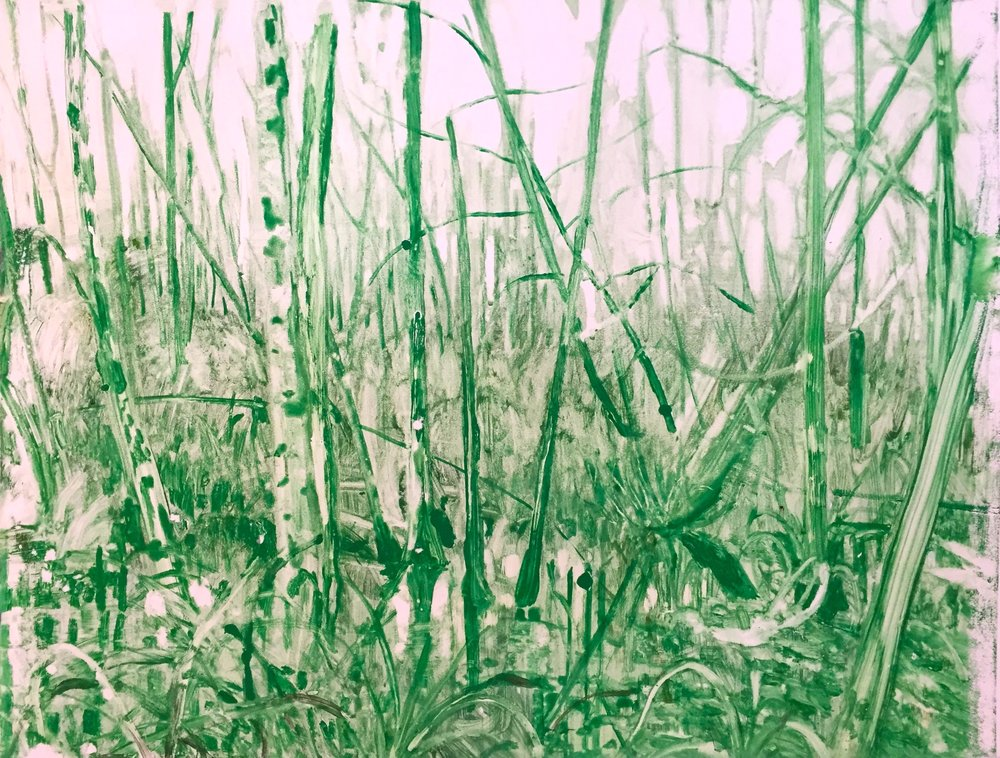 "swamp in green watercolour monotype 24""x34"""