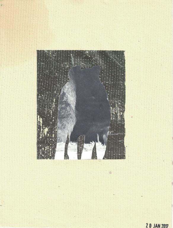 """wolf collage, 8""""x10"""""""