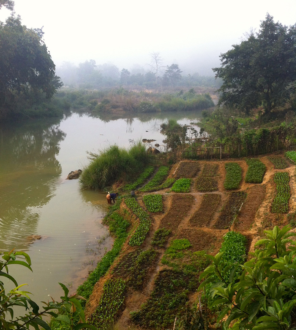 A garden by the stream that is the water source of Ban Mai community
