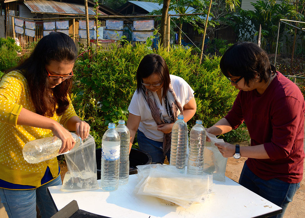 Paradee, Apinya, and Phitchaya helped set up the daily experiments.