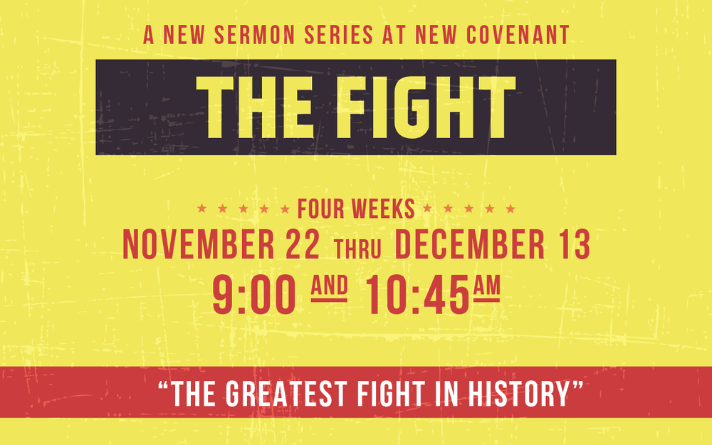 thefight_series