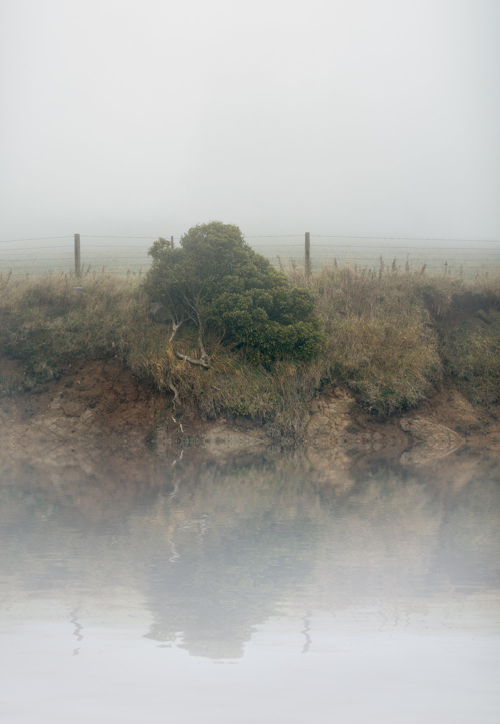 Ōtepoti Peninsular, August.   Archival Pigment Print on matte photo rag  2015  840mm x 1216mm    Edition of 5 + 2AP's