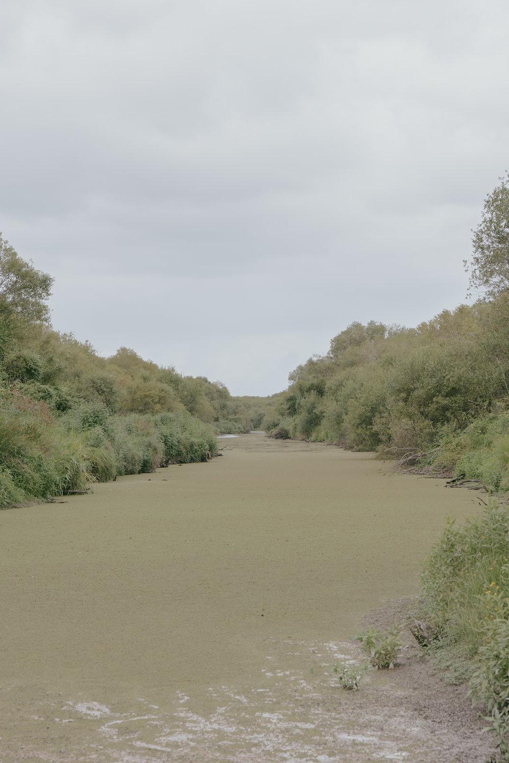 Canal, Flax Block  .jpg