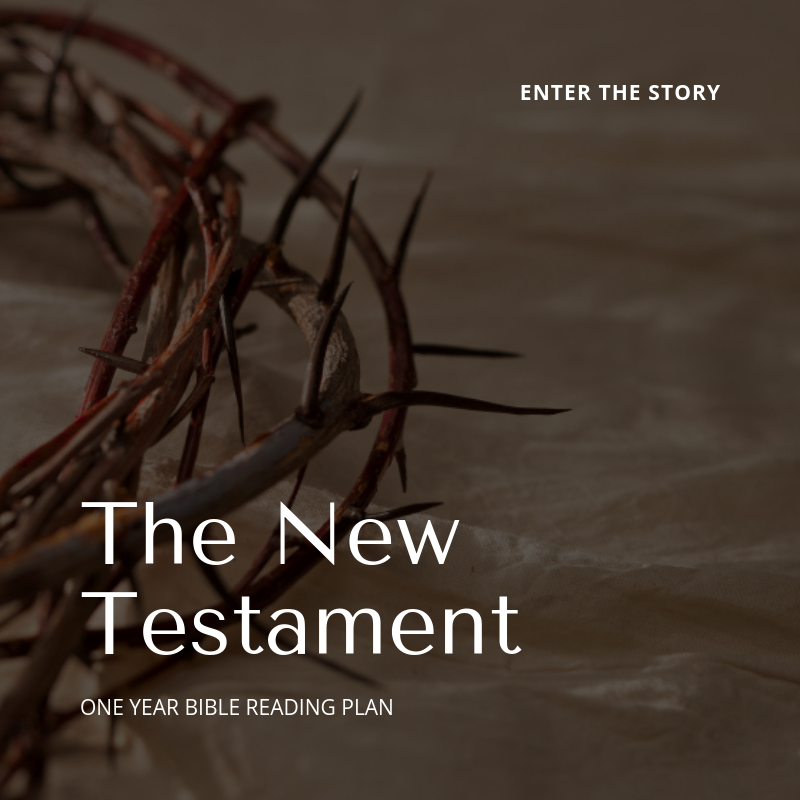 - Read the New Testament as the continuation of the Story in the Old Testament and the fulfillment of all it's promises in Jesus Christ!